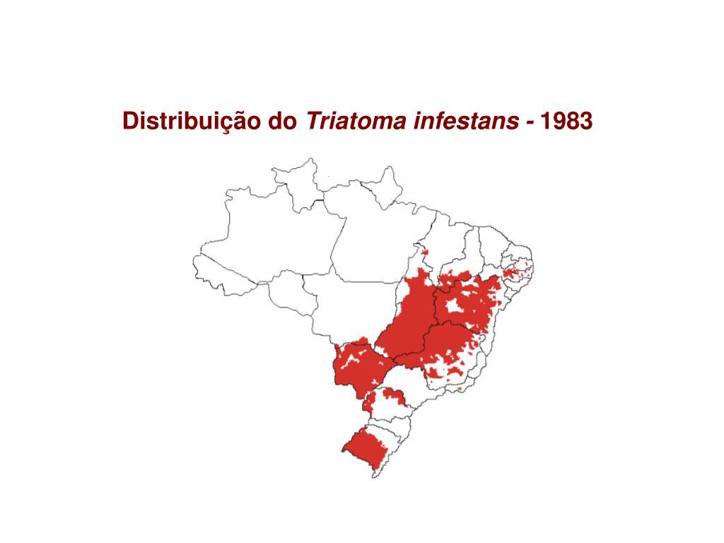 Distribuição do