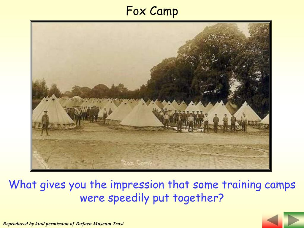 Fox Camp
