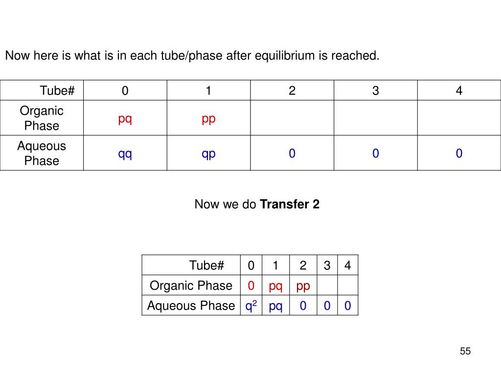 Now here is what is in each tube/phase after equilibrium is reached.