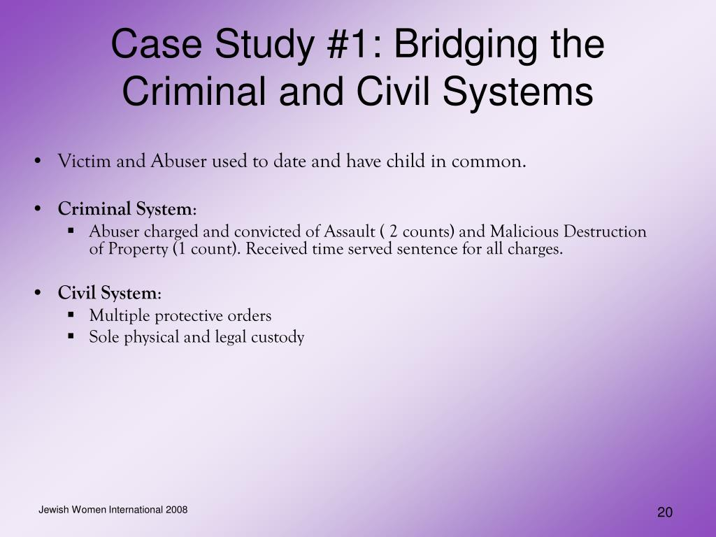 Case Study #1: Bridging the Criminal and Civil Systems
