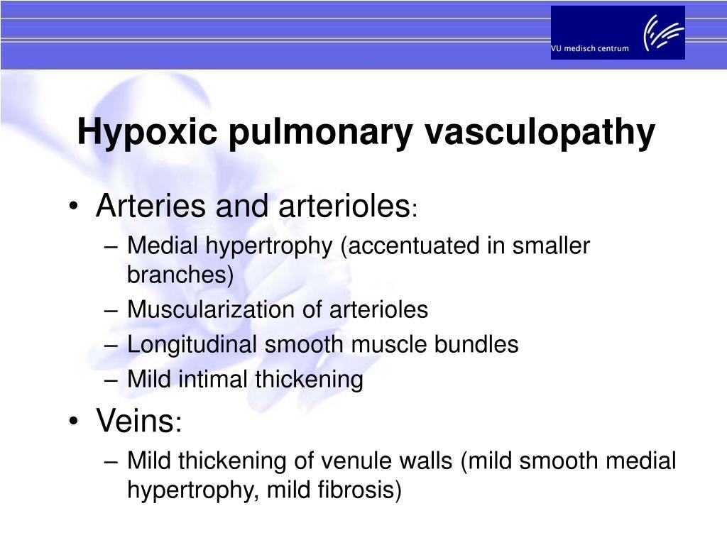 Hypoxic pulmonary vasculopathy