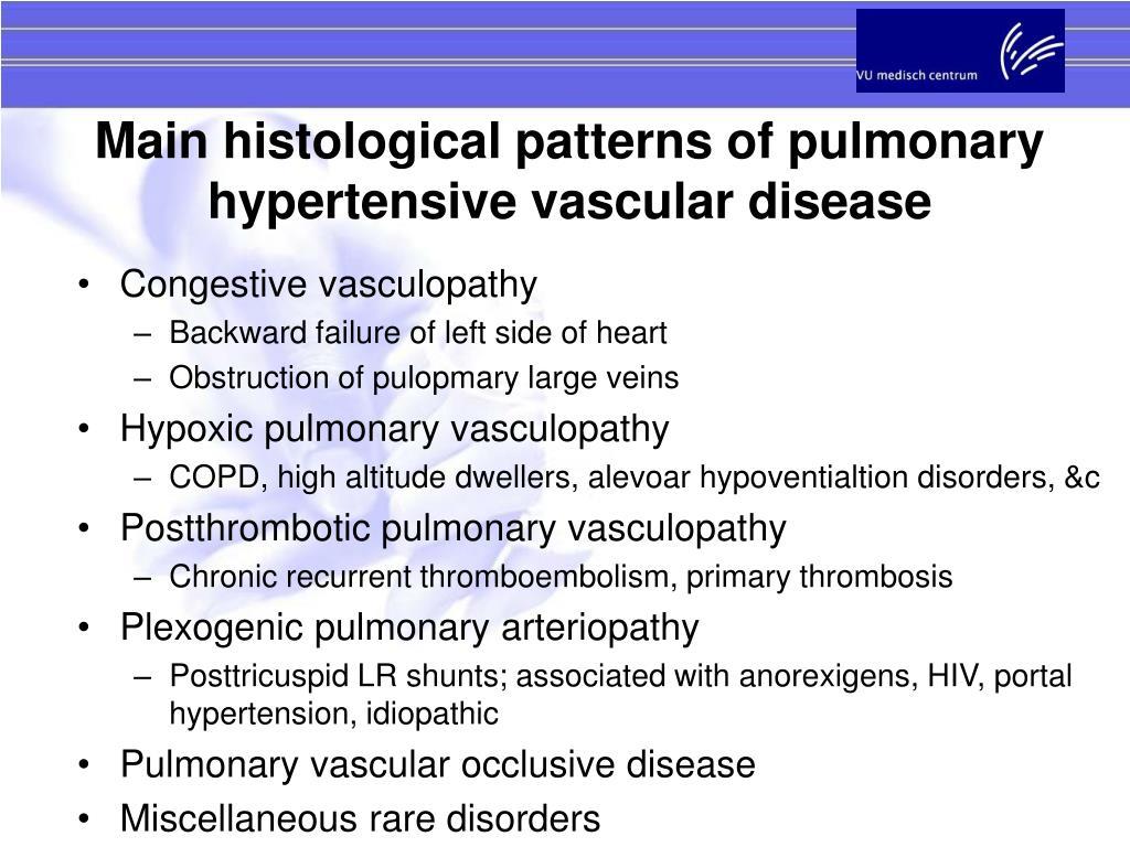 Main histological patterns of pulmonary hypertensive vascular disease