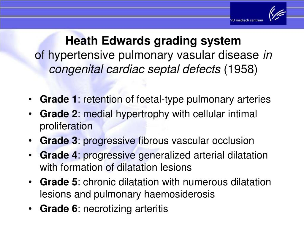 Heath Edwards grading system