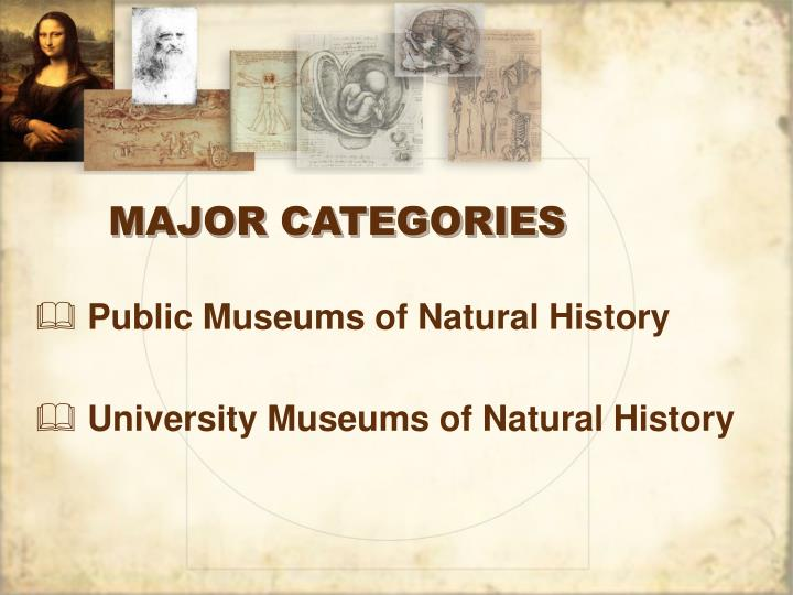 MAJOR CATEGORIES