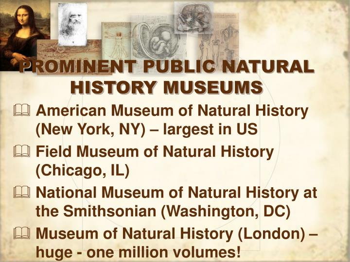 PROMINENT PUBLIC NATURAL HISTORY MUSEUMS