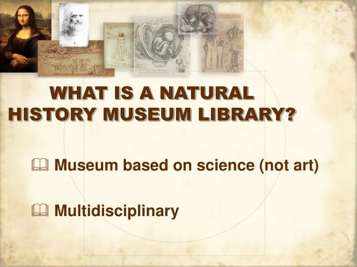 What is a natural history museum library
