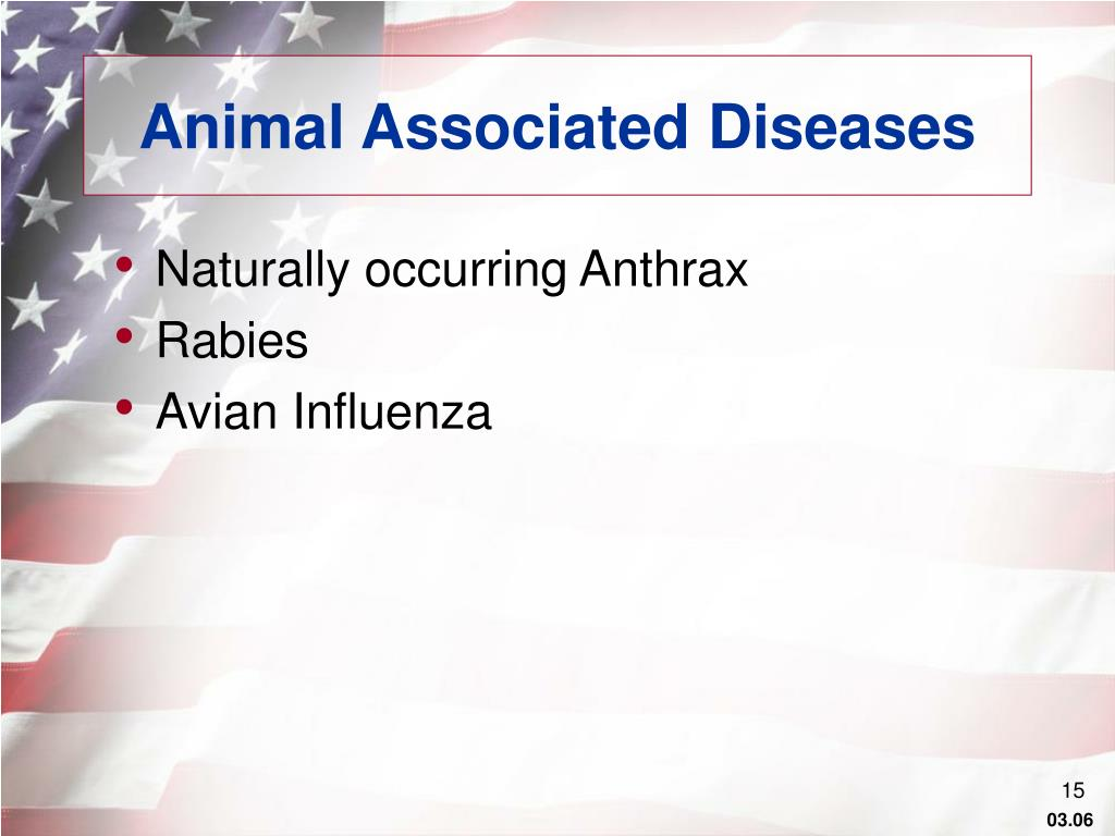 Animal Associated Diseases
