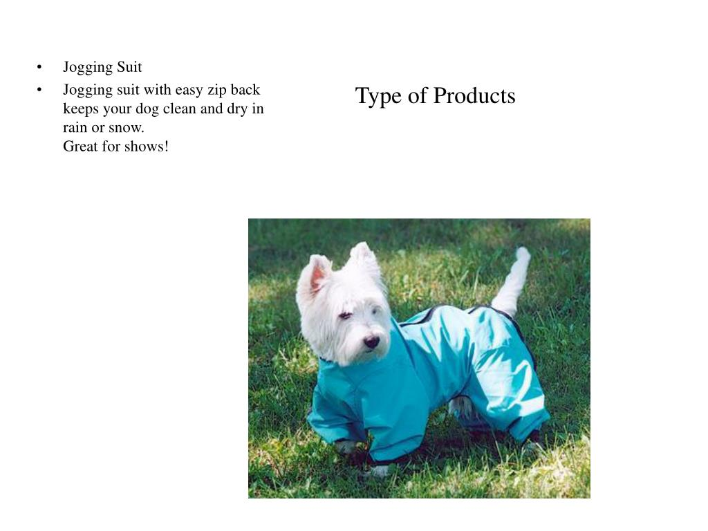 Type of Products