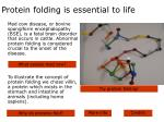 protein folding is essential to life
