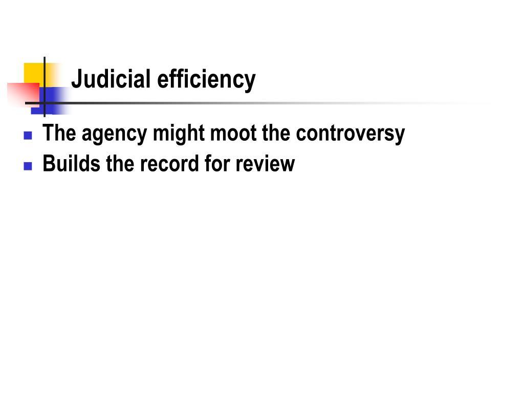 Judicial efficiency