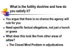 what is the futility doctrine and how do you satisfy it