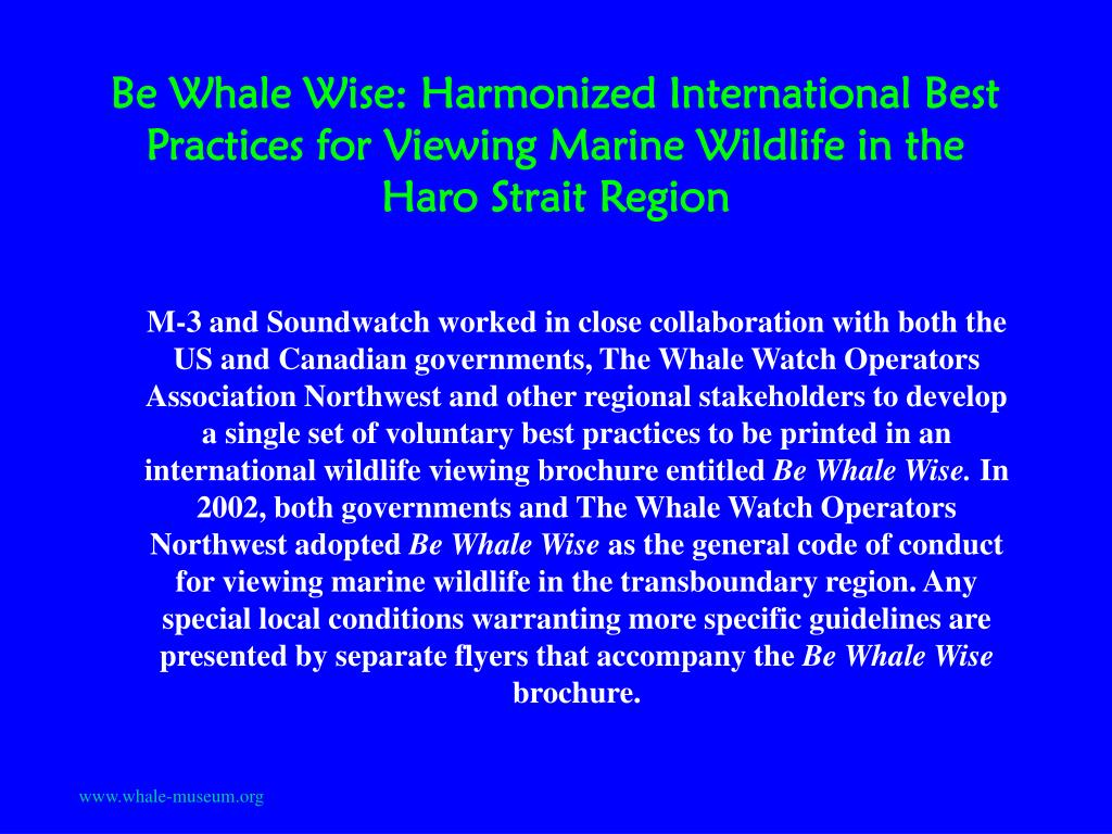 Be Whale Wise: Harmonized International Best Practices for Viewing Marine Wildlife in the Haro Strait Region