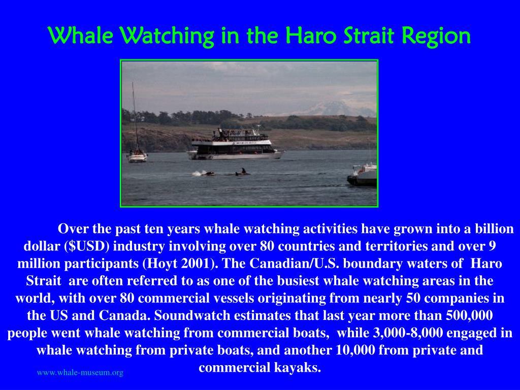 Whale Watching in the Haro Strait Region