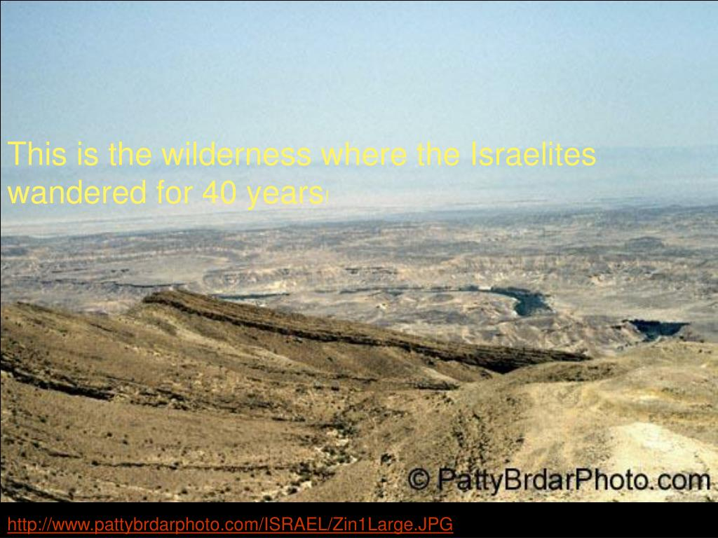 This is the wilderness where the Israelites wandered for 40 years