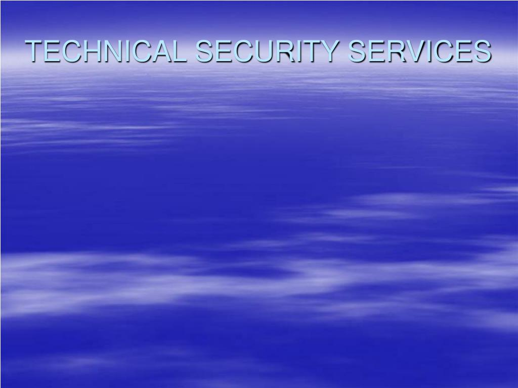 TECHNICAL SECURITY SERVICES