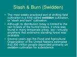 slash burn swidden