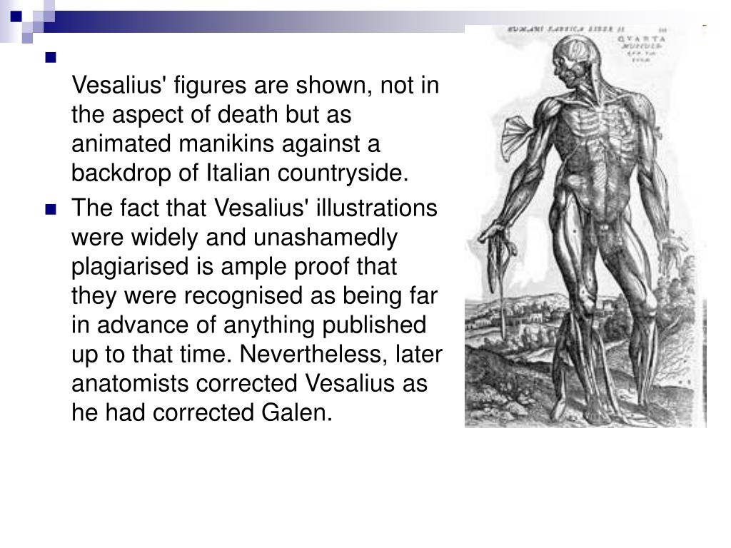 Vesalius' figures are shown, not in the aspect of death but as animated manikins against a backdrop of Italian countryside.
