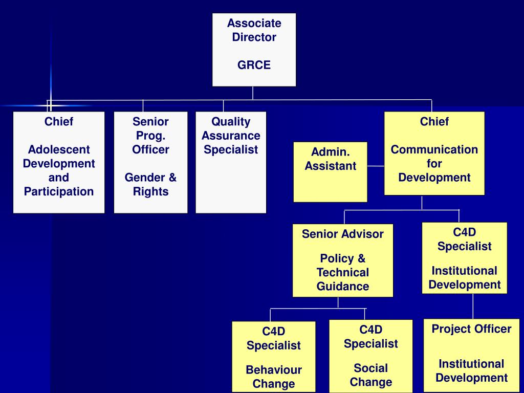 Associate Director