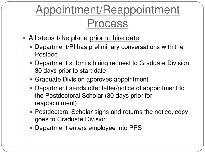 Appointment/Reappointment Process