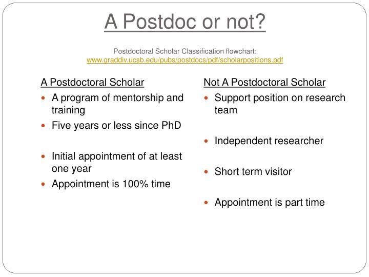 A Postdoc or not?