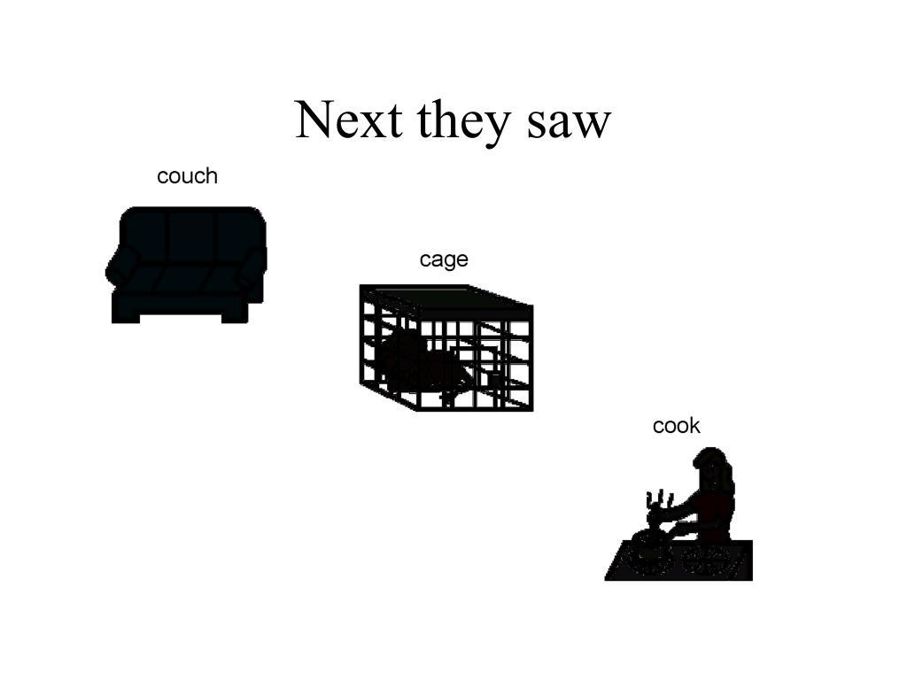 Next they saw