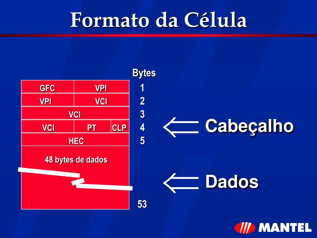 Formato da Célula