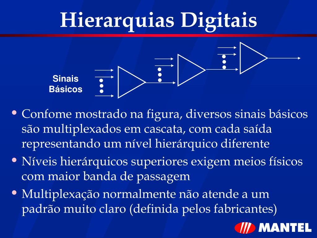 Hierarquias Digitais
