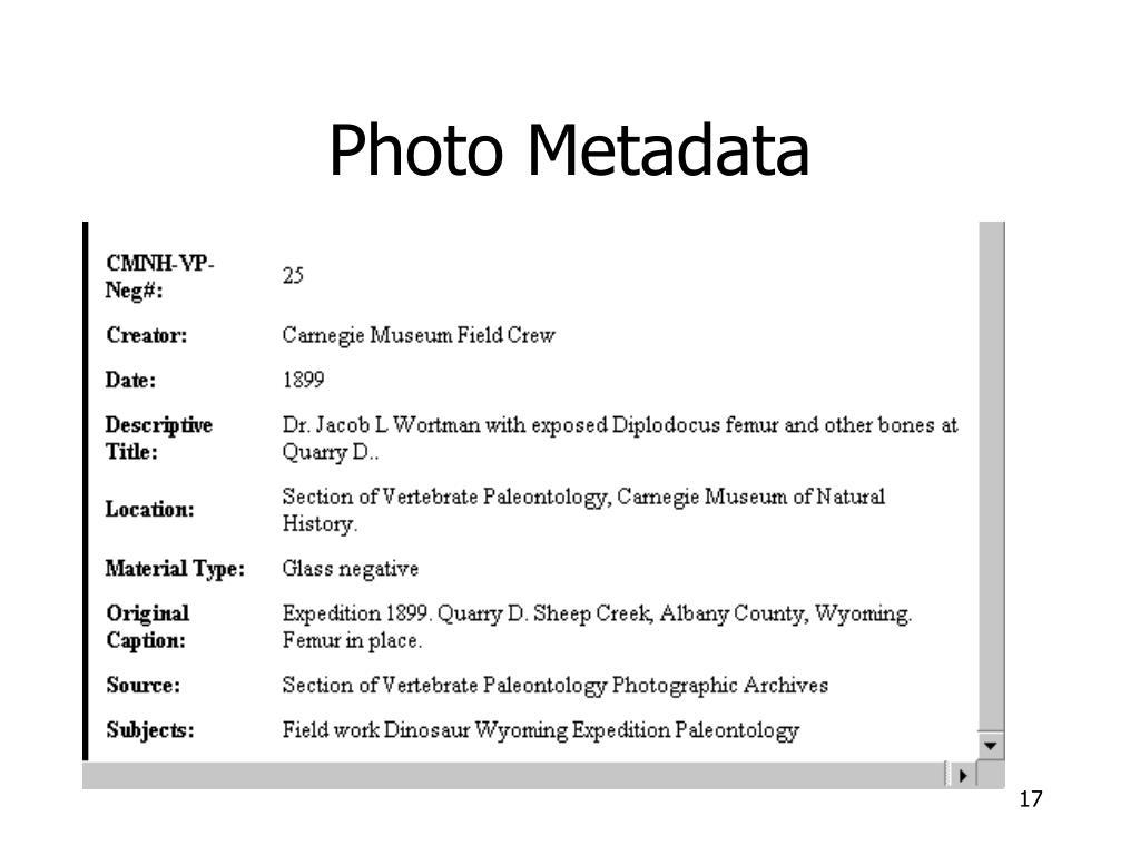 Photo Metadata