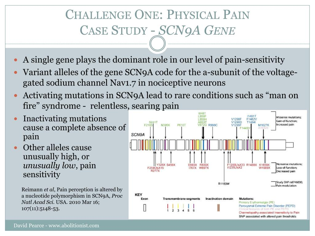 Challenge One: Physical Pain