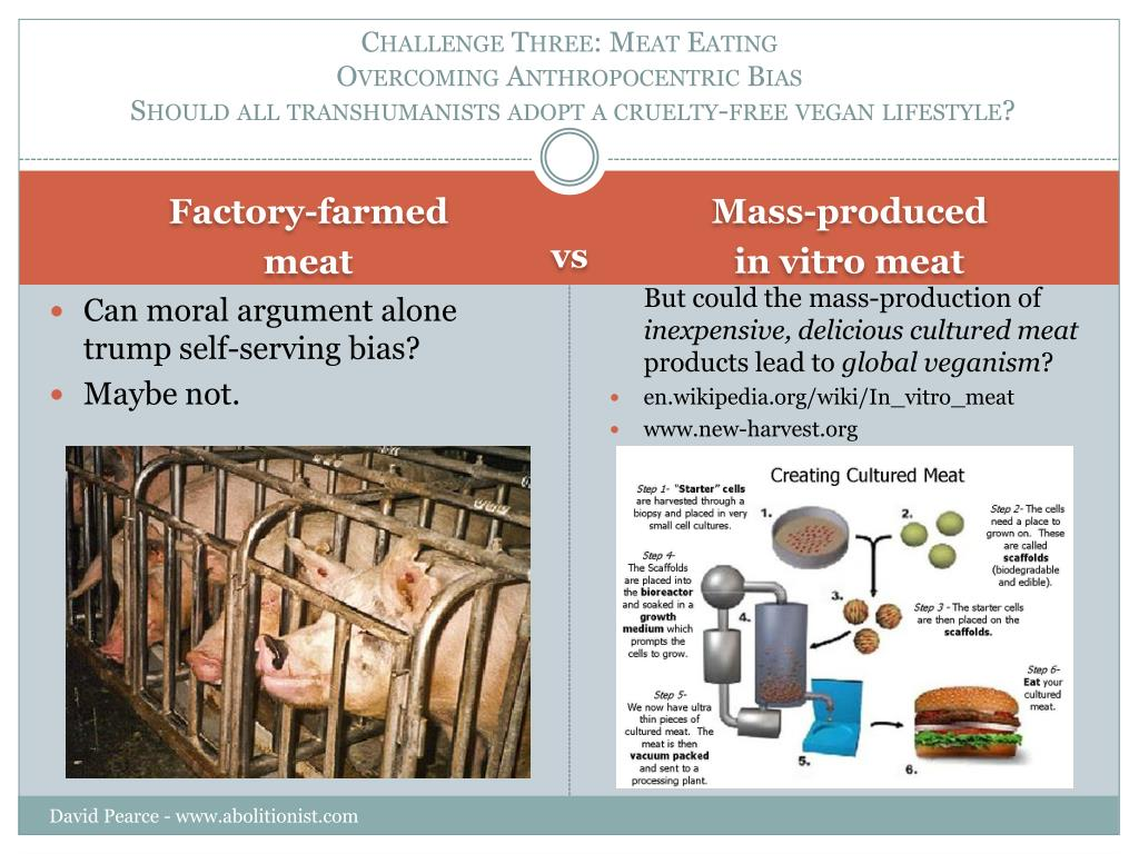 Challenge Three: Meat Eating