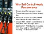 why self control needs perseverance
