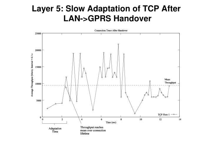 Layer 5: Slow Adaptation of TCP After