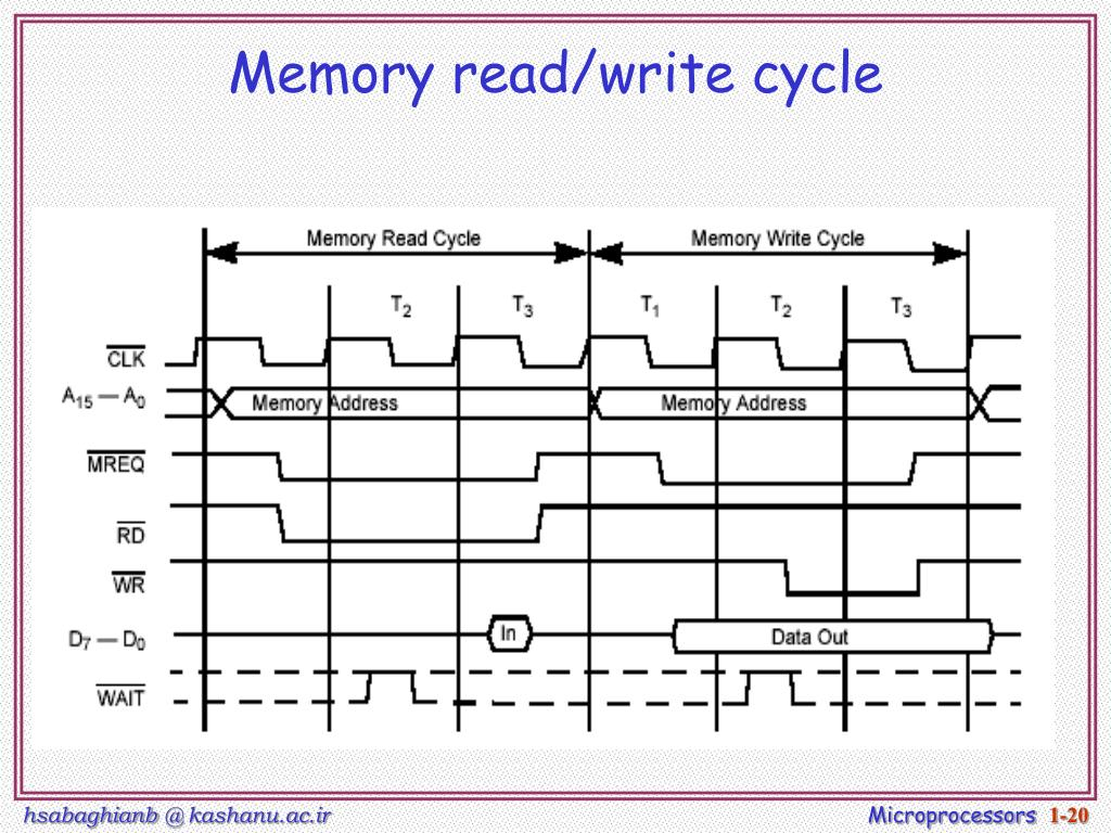 Memory read/write cycle