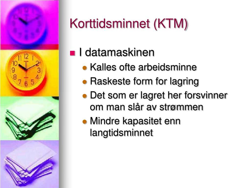 Korttidsminnet (KTM)