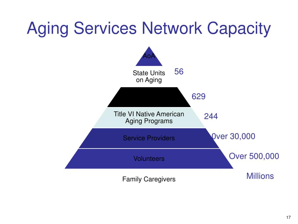 Aging Services Network Capacity