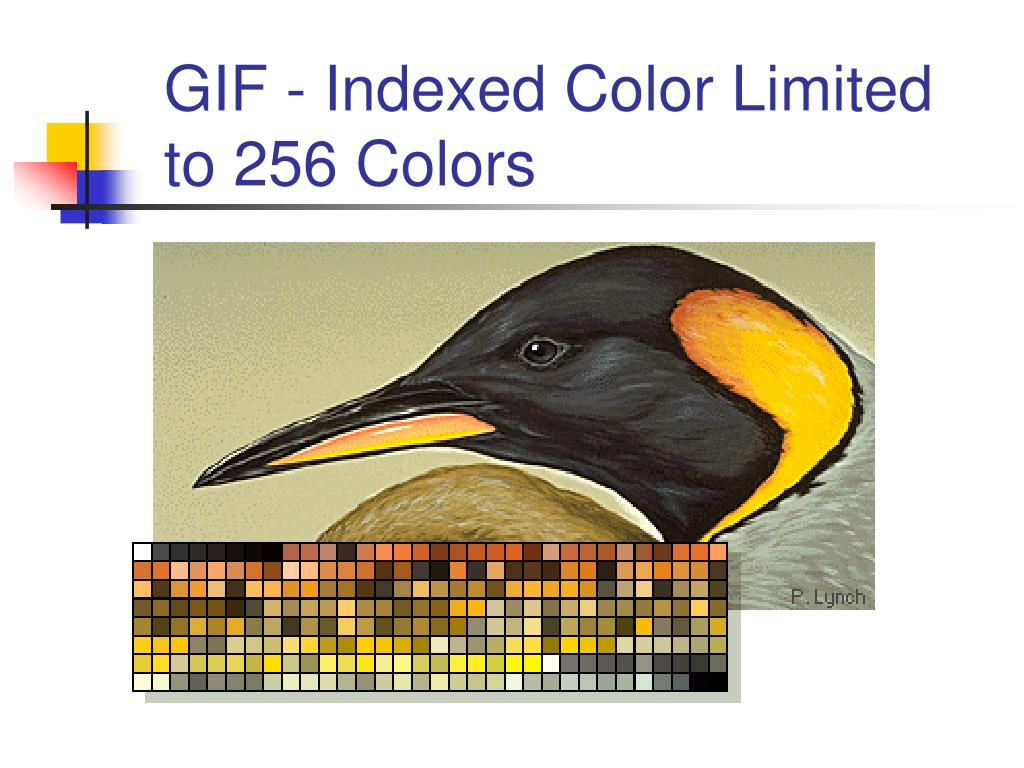 GIF - Indexed Color Limited to 256 Colors
