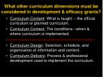 what other curriculum dimensions must be considered in development efficacy grants