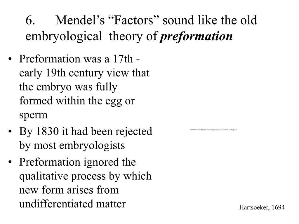 """6.Mendel's """"Factors"""" sound like the old embryological  theory of"""