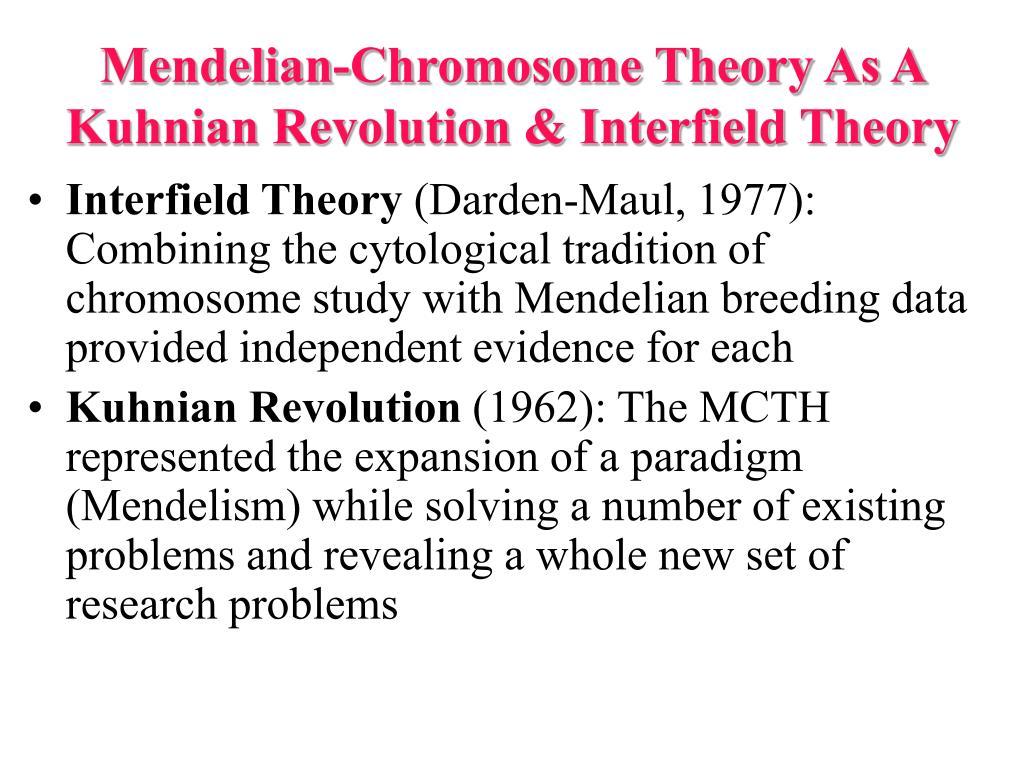 Mendelian-Chromosome Theory As A Kuhnian Revolution & Interfield Theory
