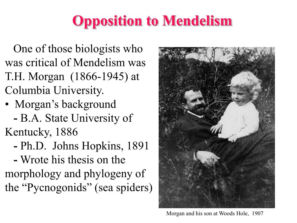 Opposition to Mendelism