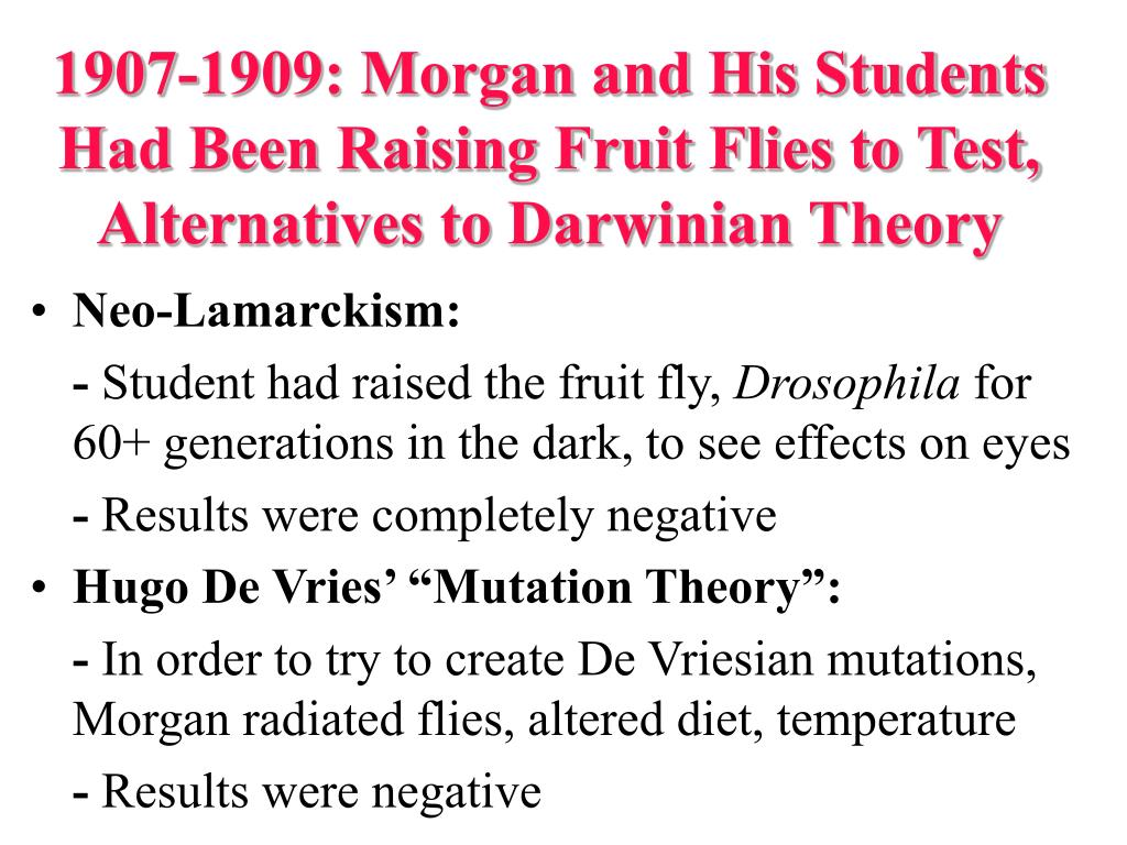 1907-1909: Morgan and His Students Had Been Raising Fruit Flies to Test, Alternatives to Darwinian Theory