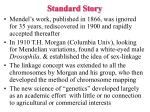 standard story