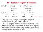 the test in morgan s notation