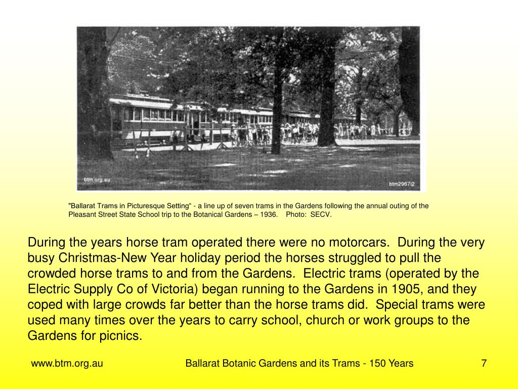 """""""Ballarat Trams in Picturesque Setting"""" - a line up of seven trams in the Gardens following the annual outing of the"""