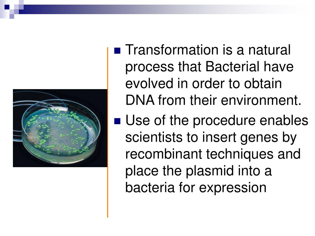 Transformation is a natural process that Bacterial have evolved in order to obtain DNA from their environment.