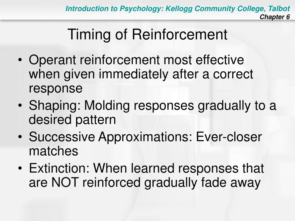Timing of Reinforcement