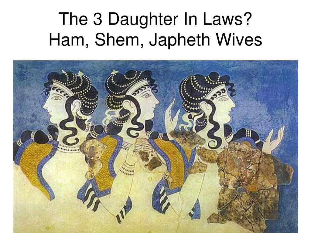 The 3 Daughter In Laws?