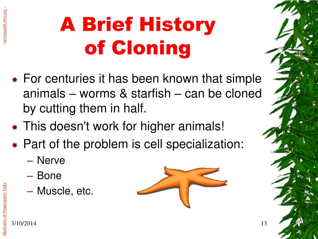 a history of cloning Cloning is a biological process which involves the production of new similar populations of genetic individuals which are very identical to the original individuals which naturally occurs in organisms like insects, plants, and bacteria which in most cases reproduce asexually.