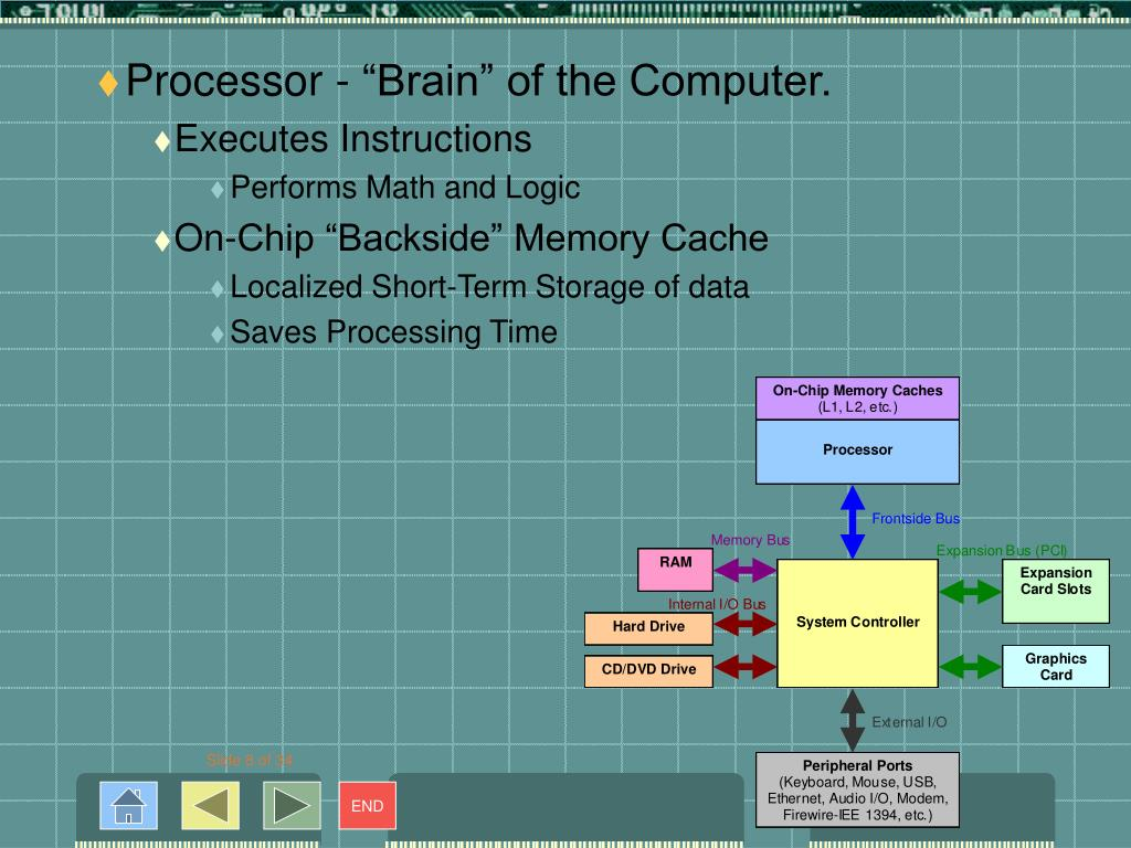 "Processor - ""Brain"" of the Computer."