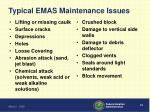 typical emas maintenance issues